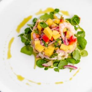 Crab, prawn and avocado stack - mango salsa and herb oil
