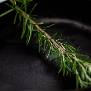 Sprig of rosemary in a cast iron pan